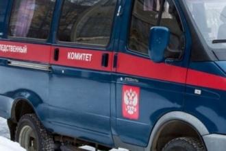 В Алтайском крае разыскивают пропавшего жителя Новосибирска