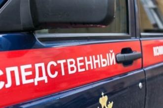 В Новоалтайске неизвестный избил девочку и хотел над ней надругаться