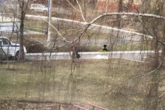 В Барнауле во дворе дома умер мужчина