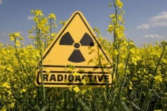На Алтае не зафиксировали повышенного уровня радиации