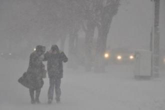 Алтайский край накрыли метели и снег