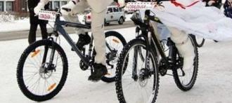 Купить велосипед в Барнауле