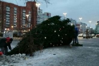 Украшенная елка упала в Барнауле около ТЦ