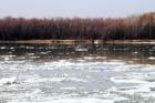 В Барнауле началась подготовка к паводку