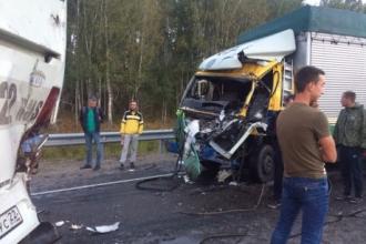 В Алтайском крае произошло столкновение грузовика и автобуса