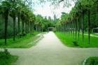 В Барнауле планируют восстановить заброшенный парк «Юбилейный»