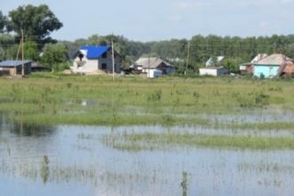 В Алтайском крае приближается вторая волна паводка