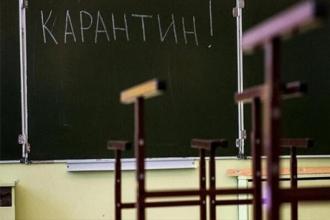 ОНФ соберет данные о процессе дистанционного обучения на карантине у родителей школьников