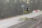 В Барнауле в ДТП погиб дорожный