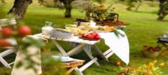 Лето – время пикников