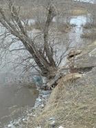 Река Барнаулка подмыла берег