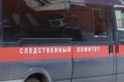 В Алтайском крае ребенку оторвало руку во время прыжка с тарзанки
