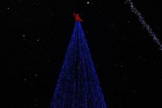 Барнаульская новогодняя елка является второй по высоте в РФ