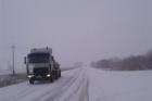 Южные района Алтайского края засыпает снегом