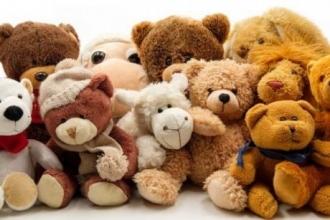 Барнаулец украл мягкие игрушки и раздал их на улице