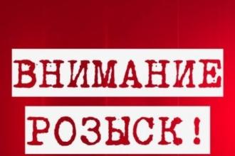 В Барнауле разыскивают женщину с собачкой