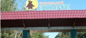 Достопримечательности Алтая: зоопарки