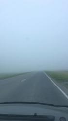 В Алтайском крае трассу окутал сильный туман