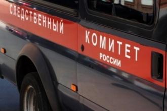 В Барнауле школьница упала с крыши многоэтажки
