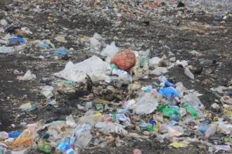 В Змеиногорске на свалке нашли труп женщины