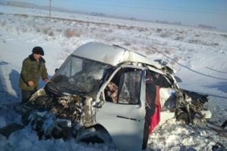 В Алтайском крае грузовой поезд протаранил Газель